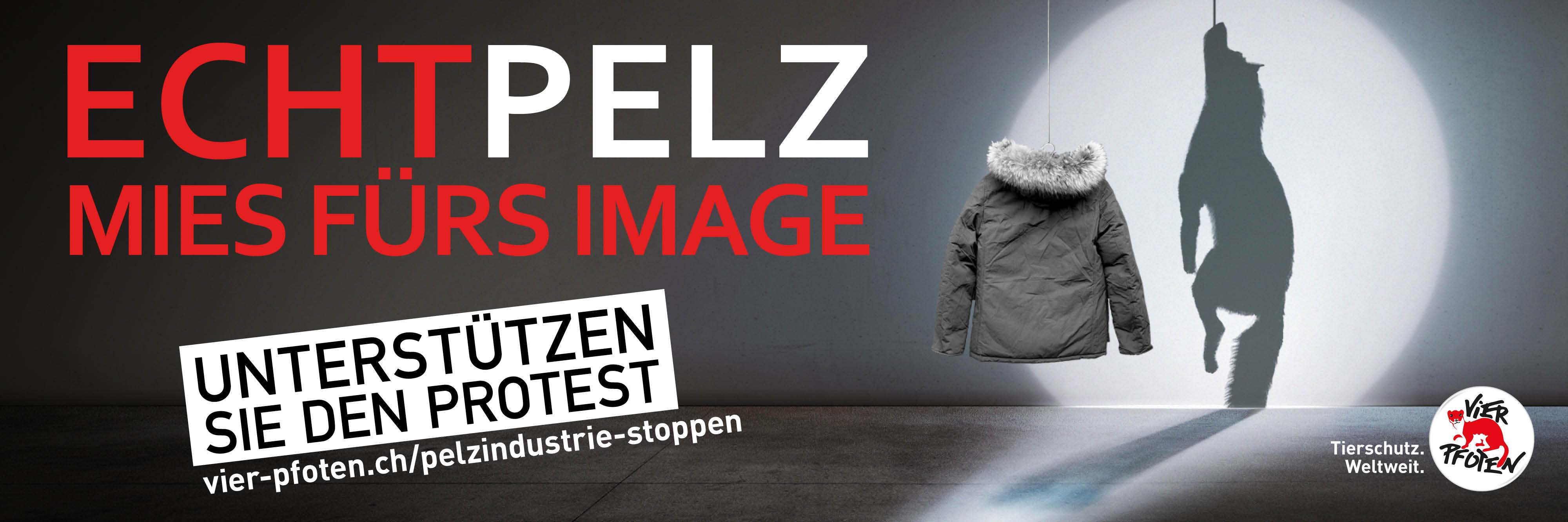 Anti-Pelz-Flyer