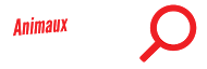 Animaux sur Internet - Quelle Arnaque